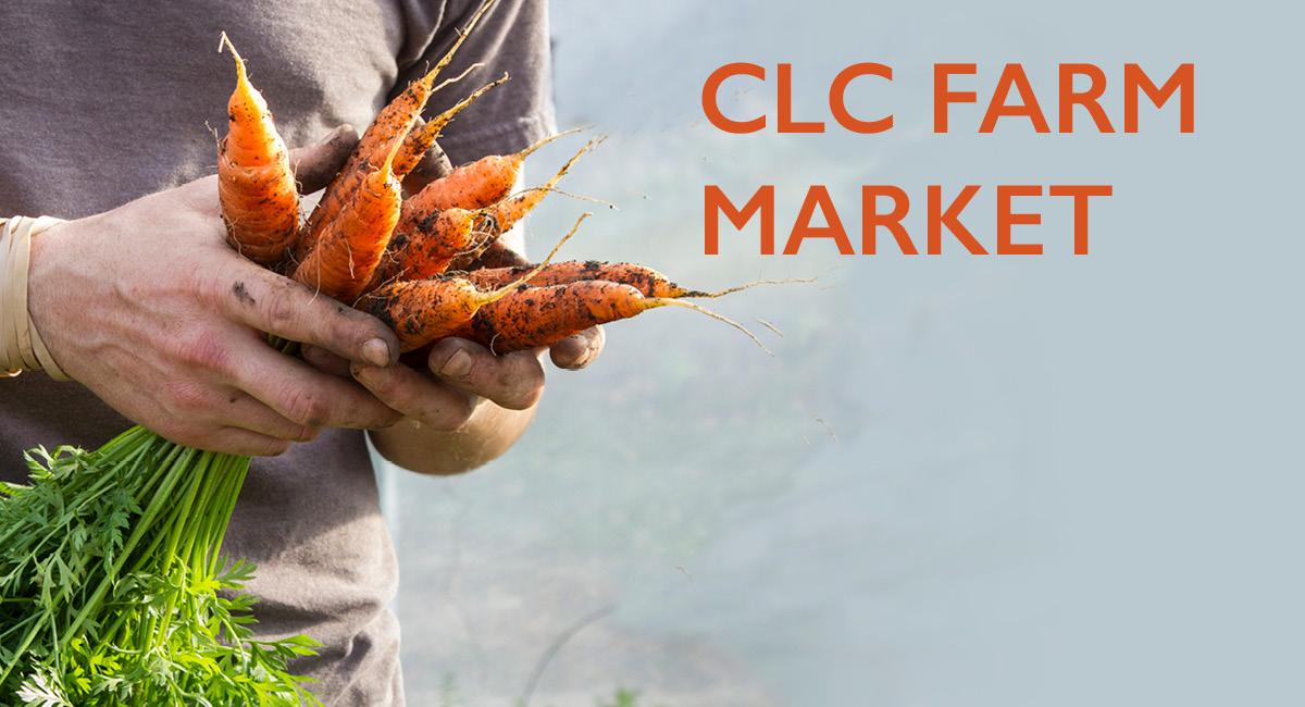 Farm Market (photo of fresh produce)