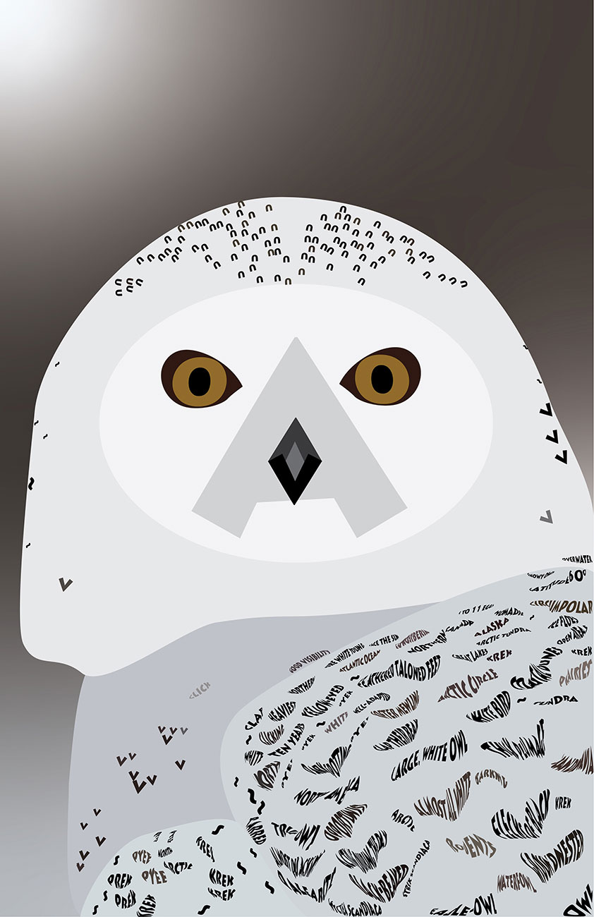 Lythos Snowy Owl (in type) by Edith Long